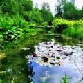 Jardins de la Découverte (3) © Sarah ClauseCopie